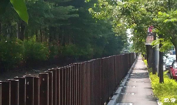 東臨港線鐵道與自行車道